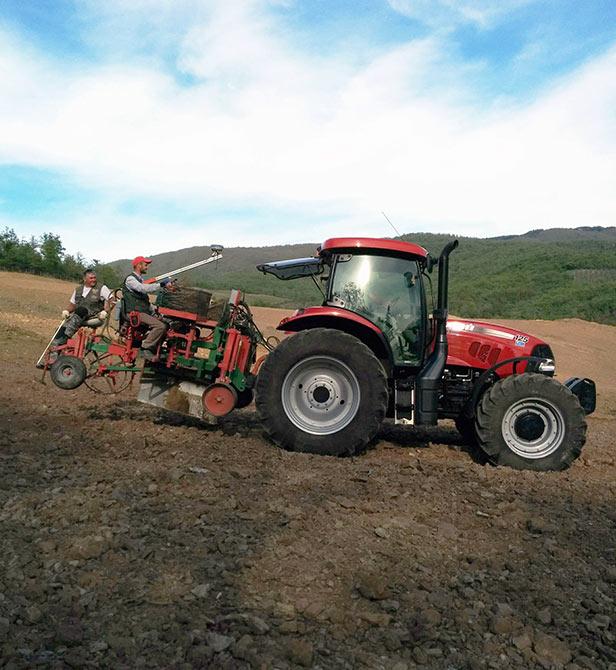 STX AGRI